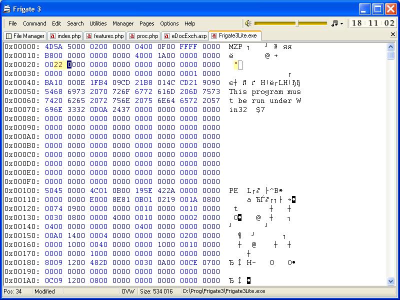 Frigate - Screenshot - Hex Editor